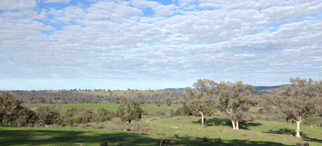 Mid Lachlan Landcare