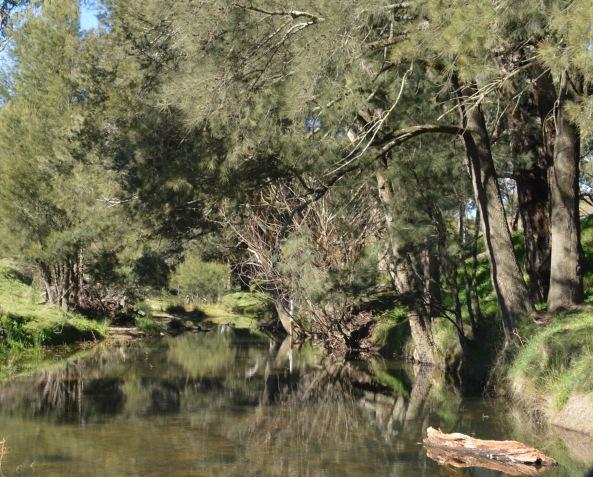 Neville Creek