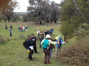 Wattle day walk group photo