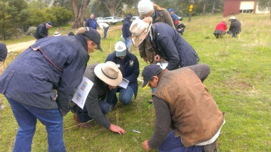 Monitoring field day